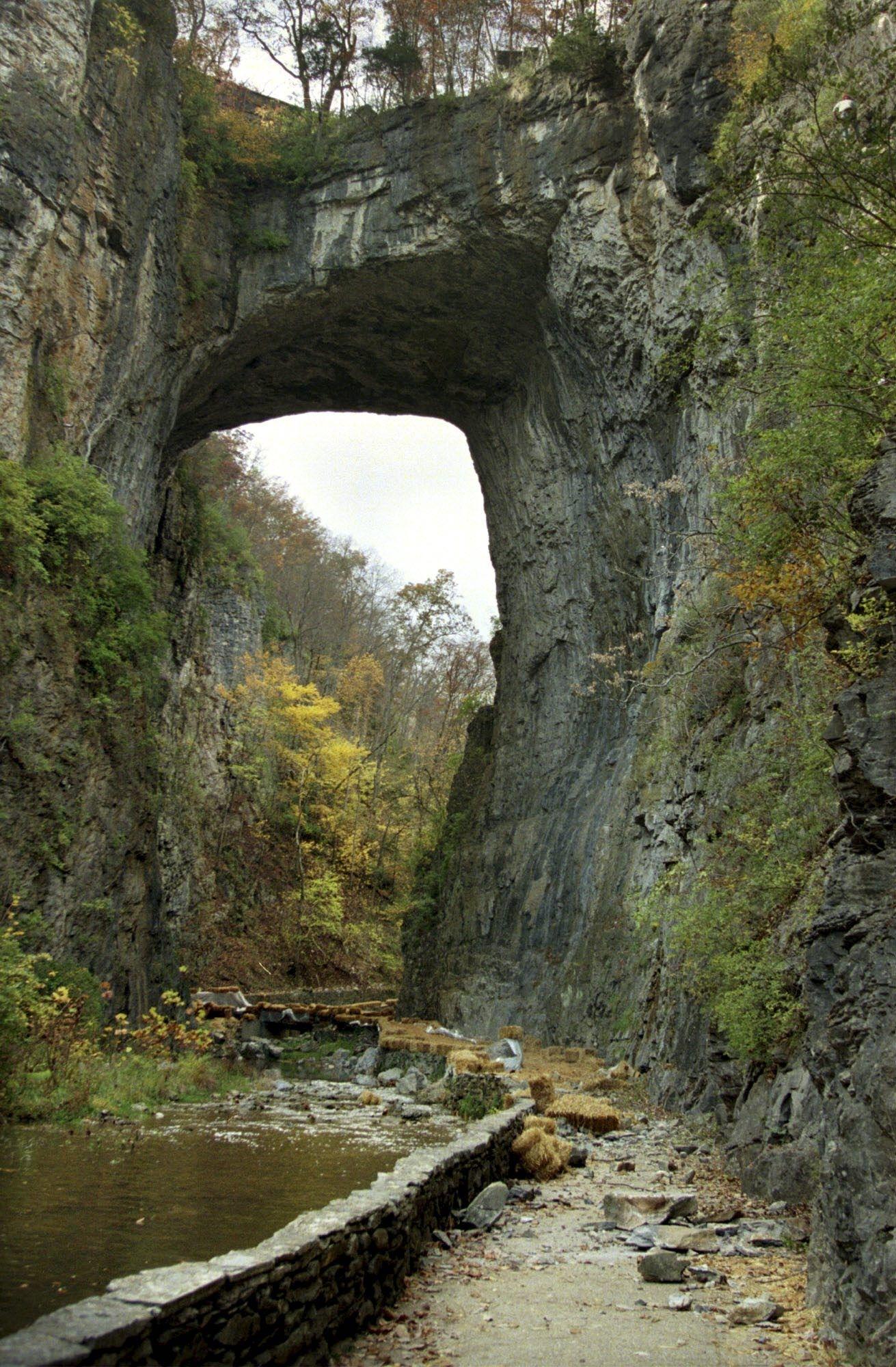 Tracy: Bridge