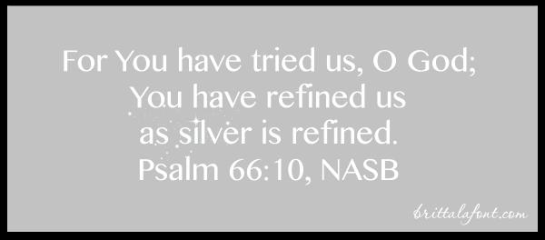 The Reward of Refining